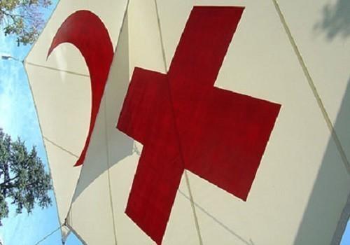 """подчинение """"Российского Красного креста"""" государству"""